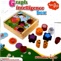 Graph Intelligence Box - Shape Sorter